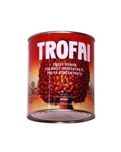 Palmnut Fruit Concentrate by Trofai 800g